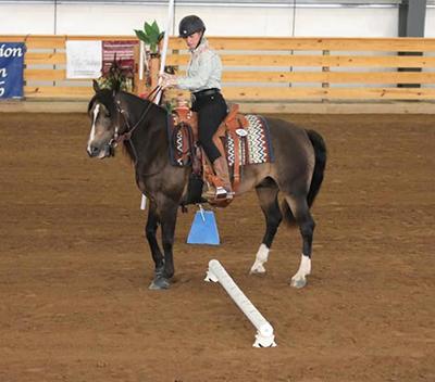 Horse doing sidepass over rail