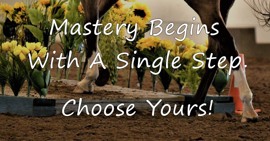 Horse stepping up on bridge. Mastery begins with a single step. Choose yours!
